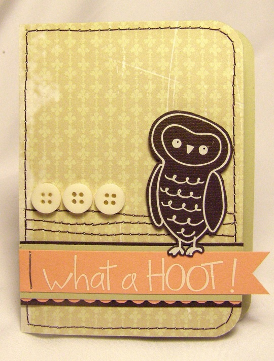 owly 001